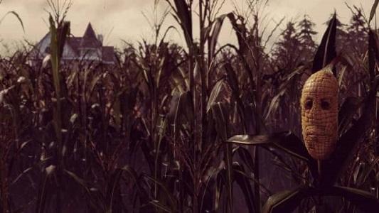 Maize02